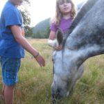 Antonia_harry_horse