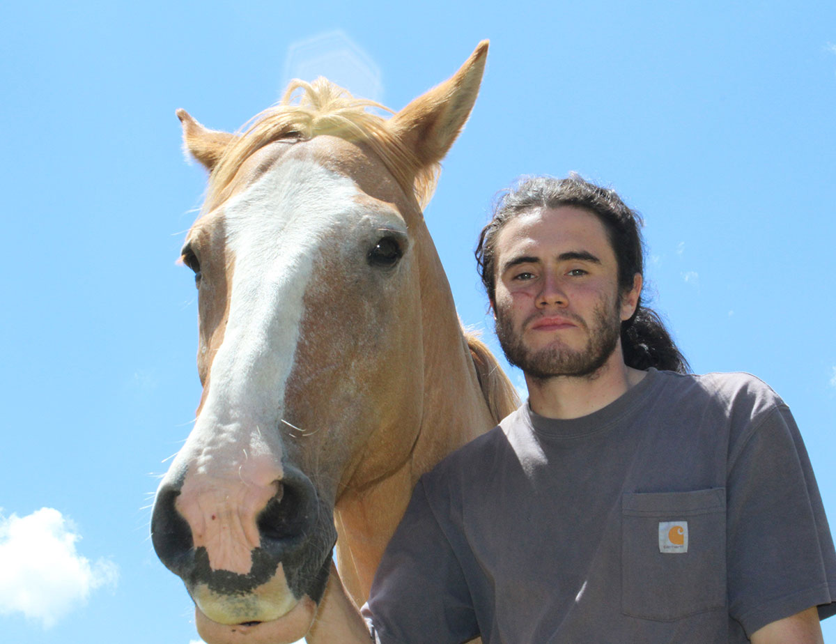 felipe counselor achibueno horse